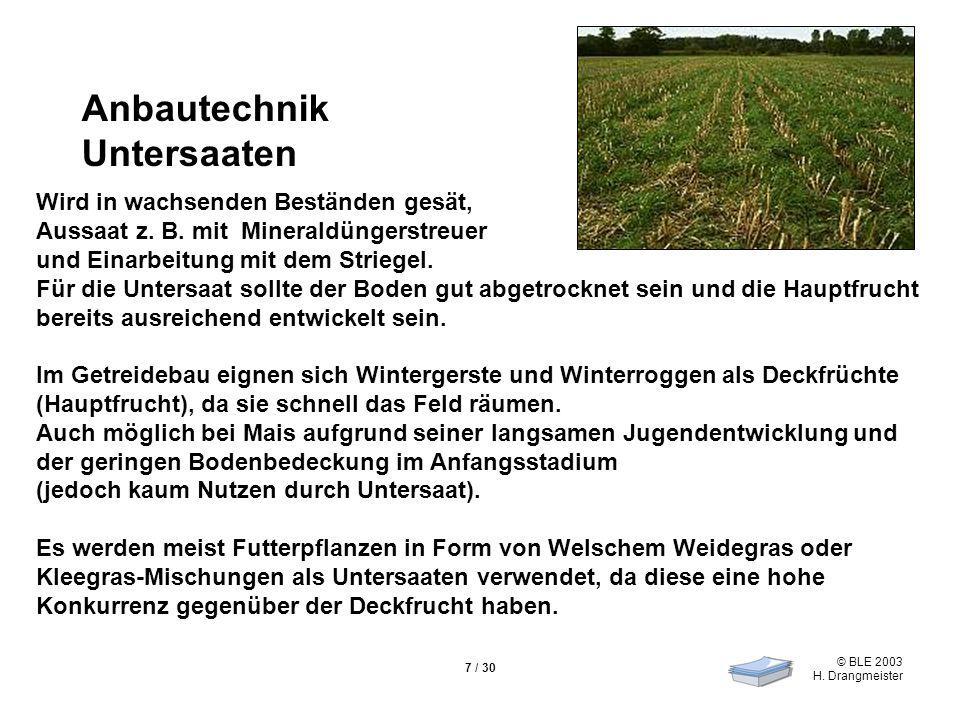© BLE 2003 H. Drangmeister 7 / 30 Wird in wachsenden Beständen gesät, Aussaat z.