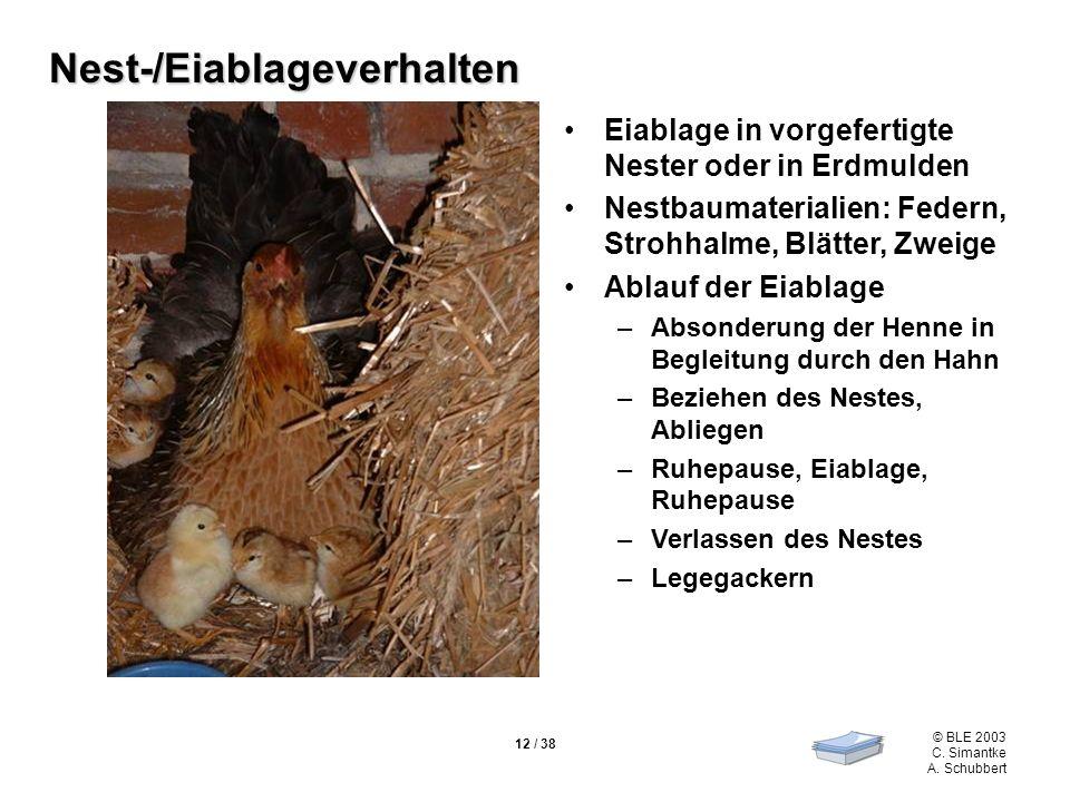 © BLE 2003 C. Simantke A. Schubbert 12 / 38 Nest-/Eiablageverhalten Eiablage in vorgefertigte Nester oder in Erdmulden Nestbaumaterialien: Federn, Str