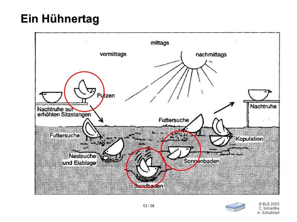 © BLE 2003 C. Simantke A. Schubbert 13 / 38 Ein Hühnertag
