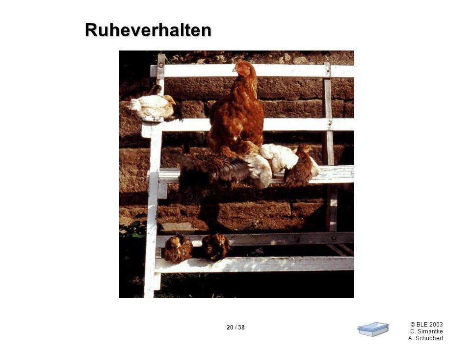 © BLE 2003 C. Simantke A. Schubbert 20 / 38 Ruheverhalten