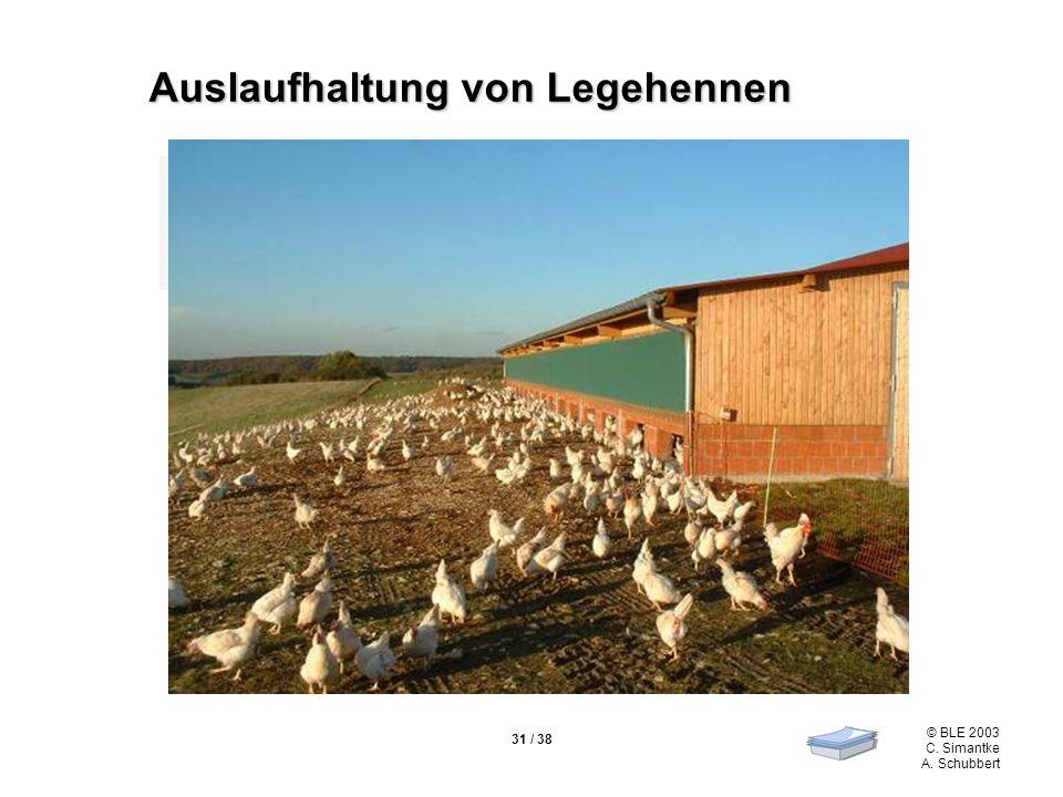© BLE 2003 C. Simantke A. Schubbert 31 / 38 Vorschrift nach der EG-Öko-VO 1804/99 Förderung von Wohlbefinden und Tier- gesundheit Auslaufhaltung von L
