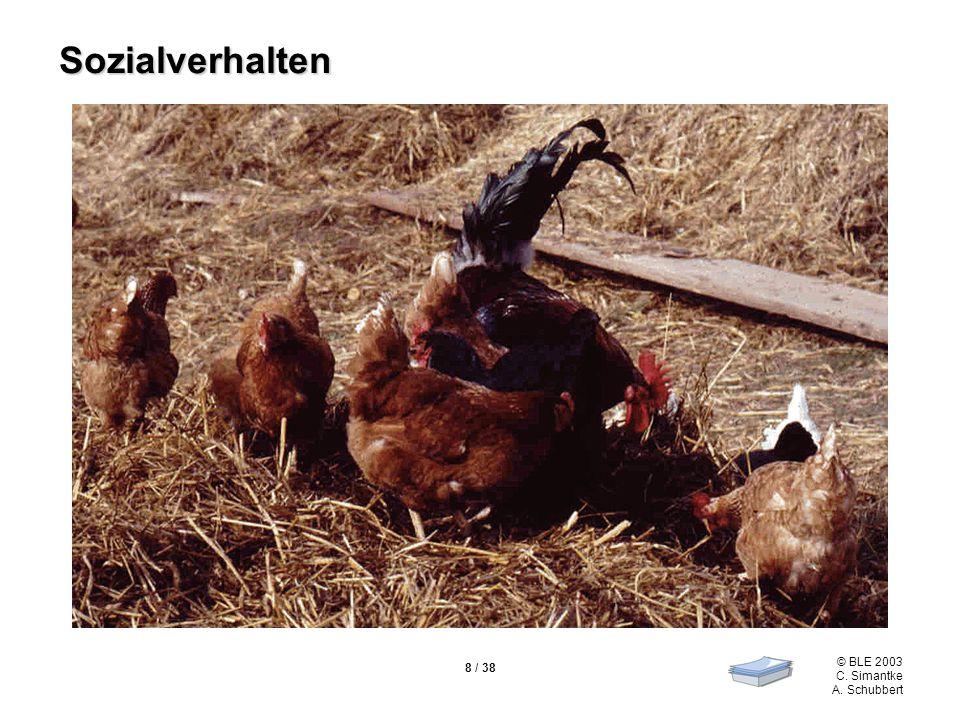© BLE 2003 C. Simantke A. Schubbert 9 / 38 Ein Hühnertag Quelle: Fölsch, Hoffmann & BAT (1992)