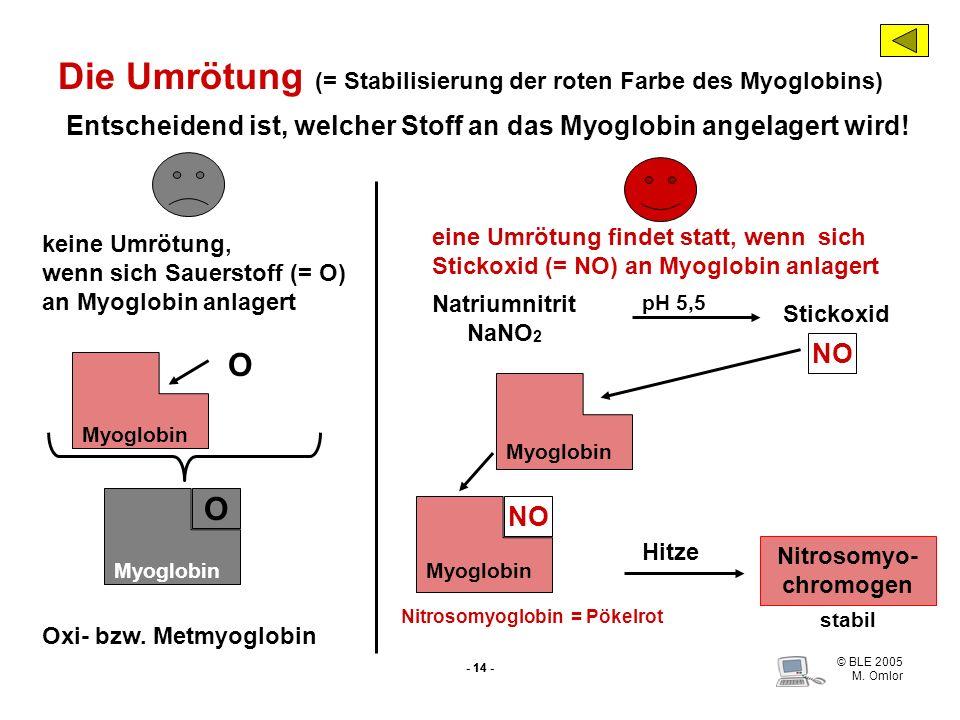© BLE 2005 M. Omlor - 14 - Entscheidend ist, welcher Stoff an das Myoglobin angelagert wird! keine Umrötung, wenn sich Sauerstoff (= O) an Myoglobin a