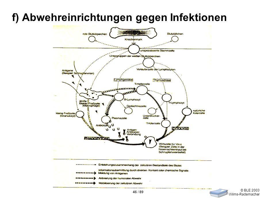 © BLE 2003 Wilms-Rademacher 46 / 89 f) Abwehreinrichtungen gegen Infektionen