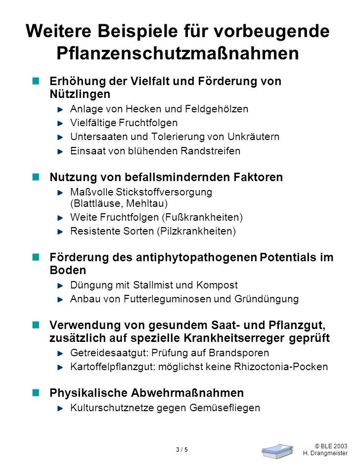 © BLE 2003 H. Drangmeister 3 / 5 Weitere Beispiele für vorbeugende Pflanzenschutzmaßnahmen Erhöhung der Vielfalt und Förderung von Nützlingen Anlage v