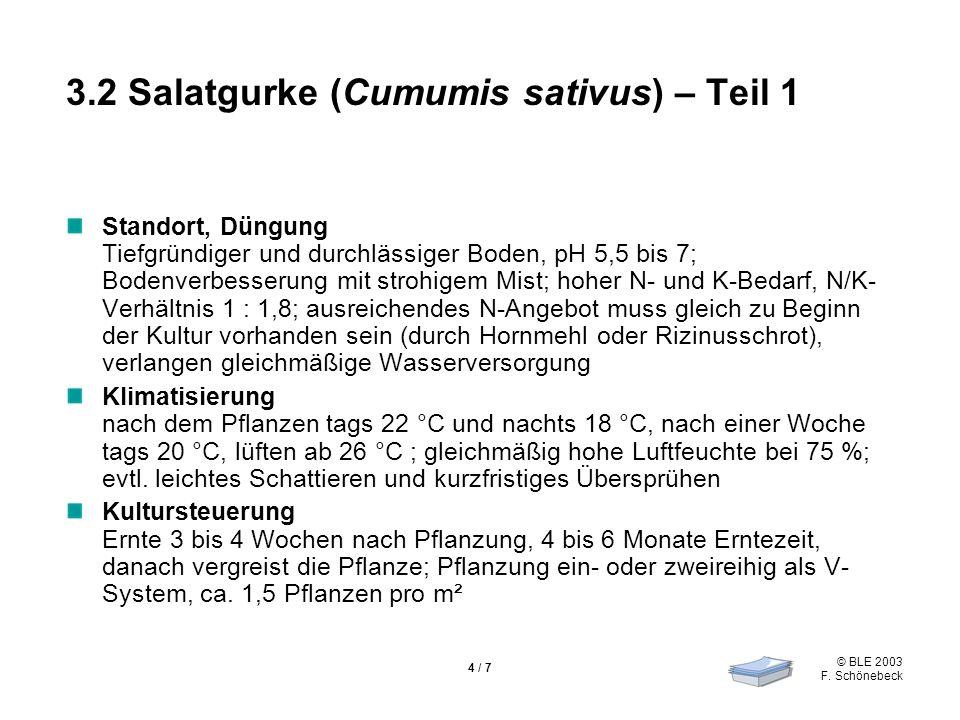 © BLE 2003 F. Schönebeck 4 / 7 3.2 Salatgurke (Cumumis sativus) – Teil 1 Standort, Düngung Tiefgründiger und durchlässiger Boden, pH 5,5 bis 7; Bodenv
