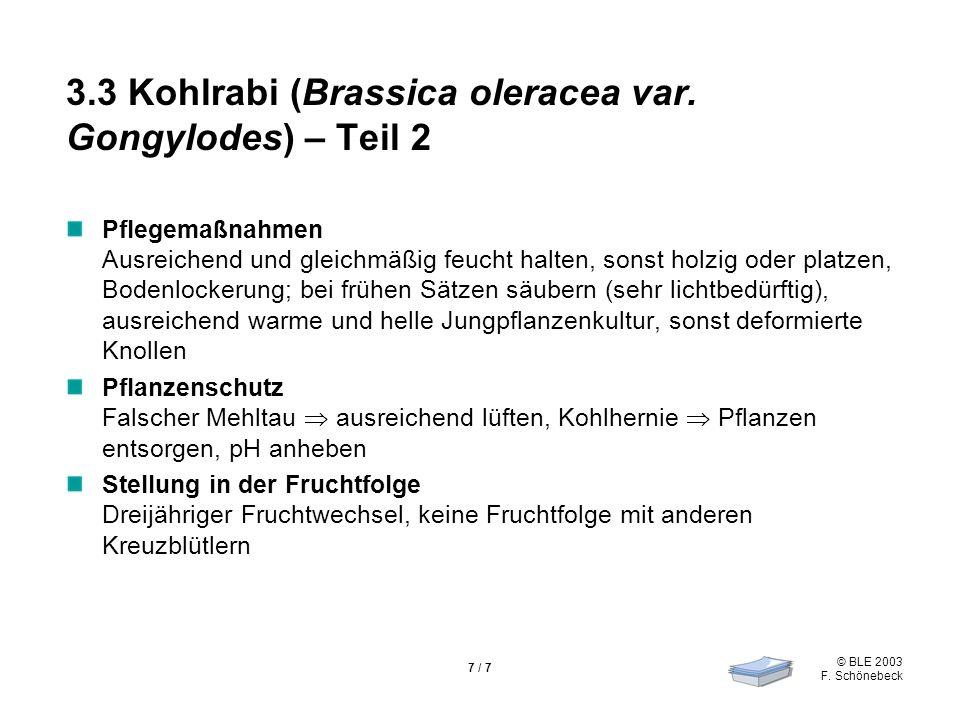 © BLE 2003 F. Schönebeck 7 / 7 3.3 Kohlrabi (Brassica oleracea var. Gongylodes) – Teil 2 Pflegemaßnahmen Ausreichend und gleichmäßig feucht halten, so