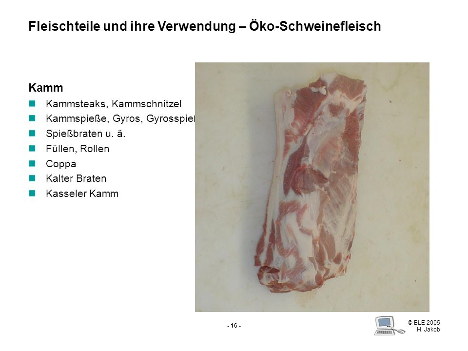 © BLE 2005 H. Jakob - 15 - Kotelett Schnitzel (a) Schweinesteaks (a) Schmetterlingssteaks (a) Cordon bleu (Schwein) Rollbraten (a) Kasseler Kaiserflei