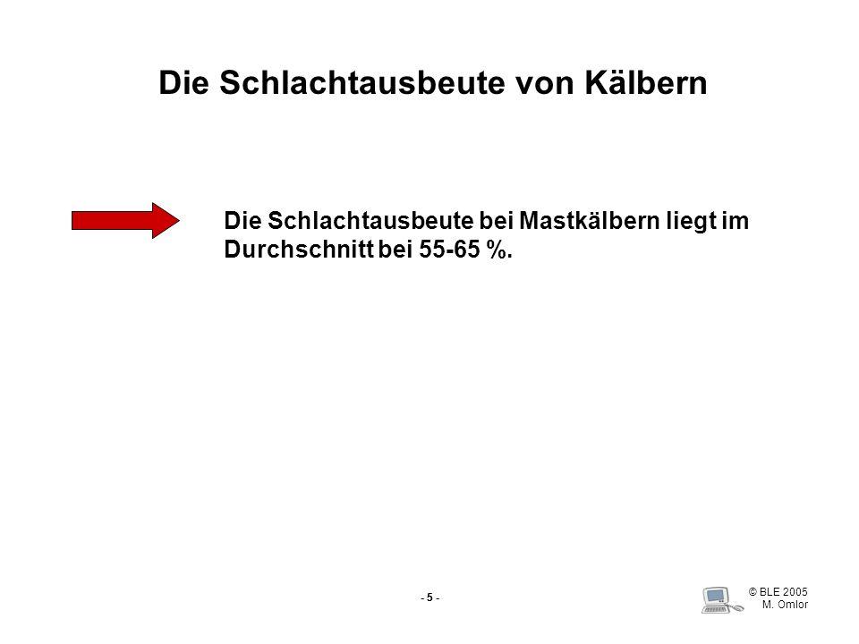 © BLE 2005 M. Omlor - 5 - Die Schlachtausbeute von Kälbern Die Schlachtausbeute bei Mastkälbern liegt im Durchschnitt bei 55-65 %.