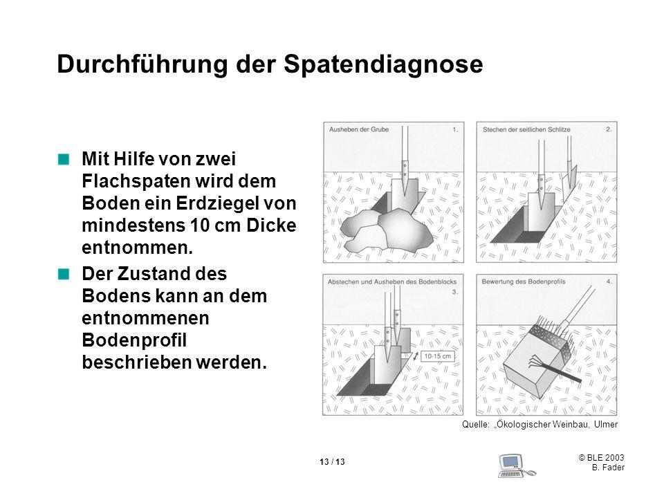 © BLE 2003 B. Fader 13 / 13 Durchführung der Spatendiagnose Mit Hilfe von zwei Flachspaten wird dem Boden ein Erdziegel von mindestens 10 cm Dicke ent