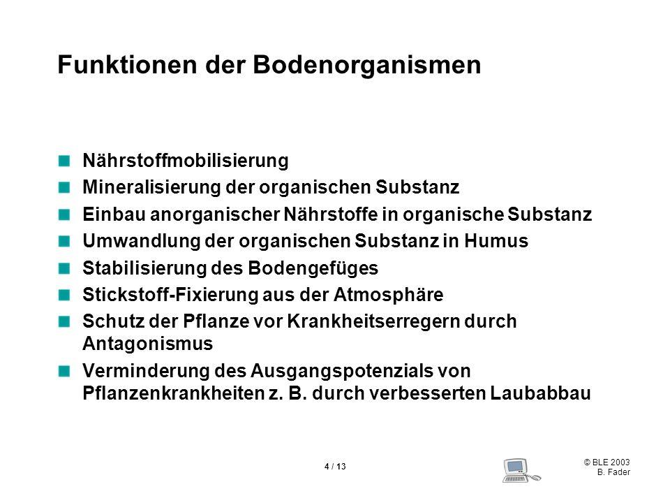 © BLE 2003 B. Fader 4 / 13 Funktionen der Bodenorganismen Nährstoffmobilisierung Mineralisierung der organischen Substanz Einbau anorganischer Nährsto