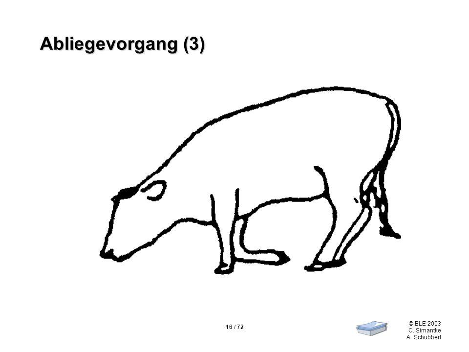 16 / 72 © BLE 2003 C. Simantke A. Schubbert Abliegevorgang (3)