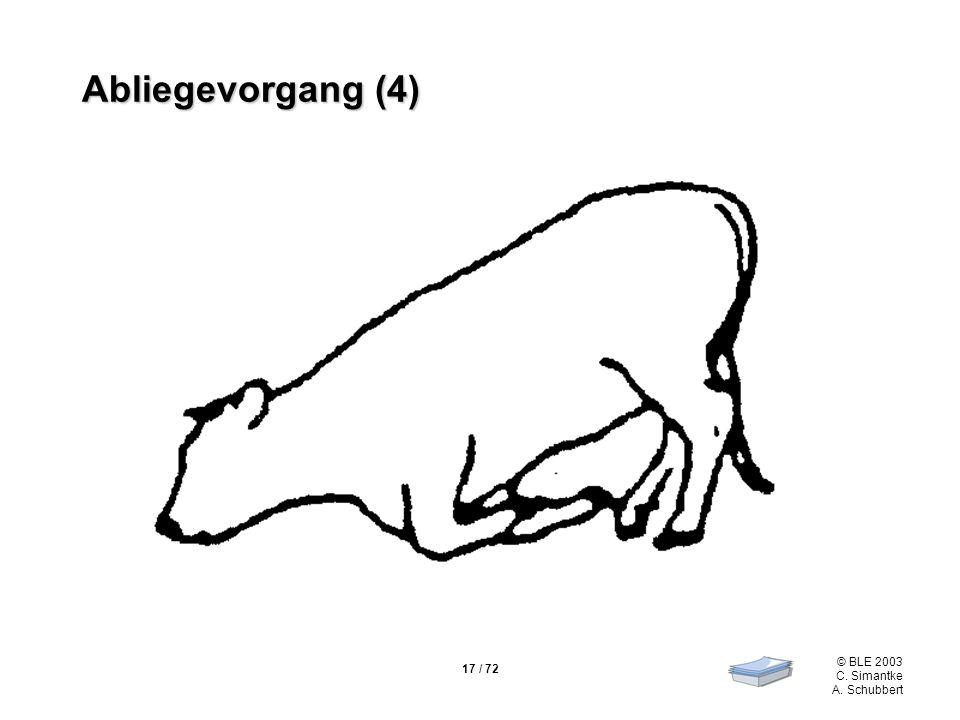 17 / 72 © BLE 2003 C. Simantke A. Schubbert Abliegevorgang (4)
