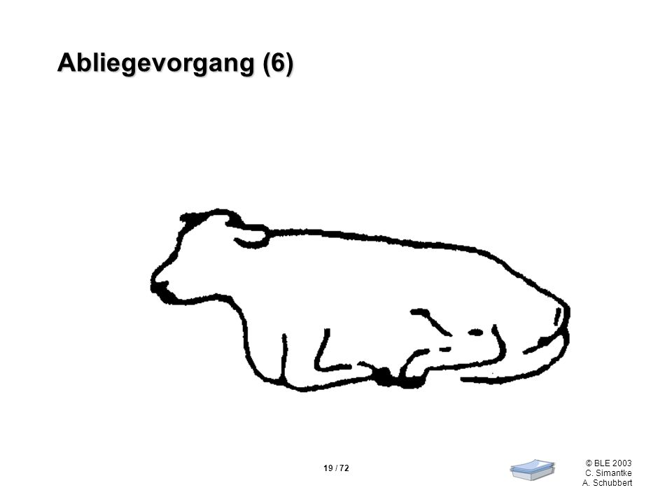 19 / 72 © BLE 2003 C. Simantke A. Schubbert Abliegevorgang (6)