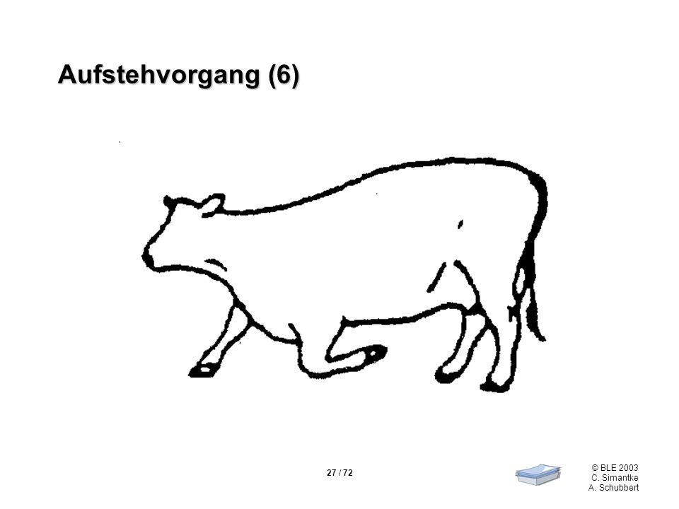 27 / 72 © BLE 2003 C. Simantke A. Schubbert Aufstehvorgang (6)
