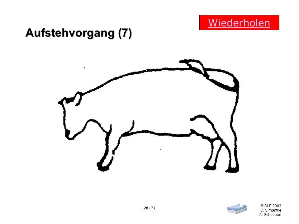 28 / 72 © BLE 2003 C. Simantke A. Schubbert Wiederholen Aufstehvorgang (7)