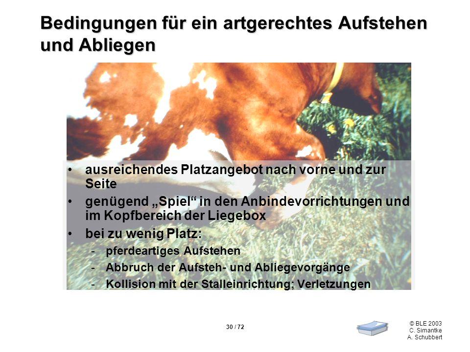 30 / 72 © BLE 2003 C. Simantke A. Schubbert Bedingungen für ein artgerechtes Aufstehen und Abliegen ausreichendes Platzangebot nach vorne und zur Seit
