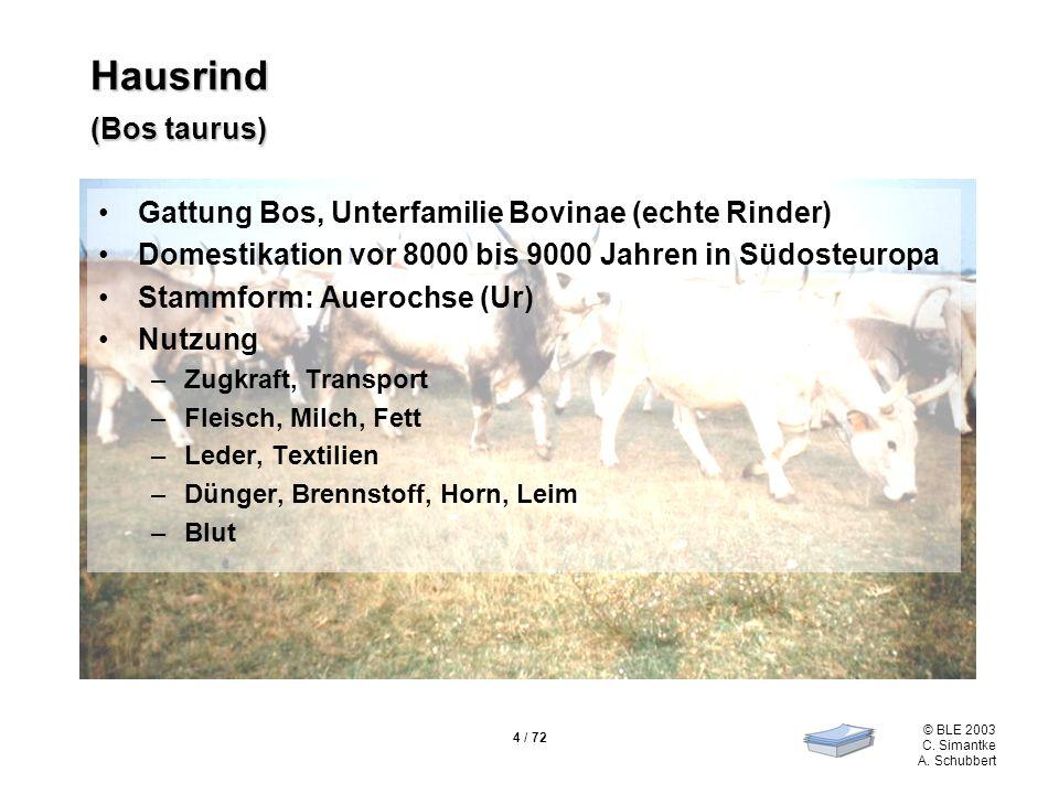 4 / 72 © BLE 2003 C. Simantke A. Schubbert Hausrind (Bos taurus) Gattung Bos, Unterfamilie Bovinae (echte Rinder) Domestikation vor 8000 bis 9000 Jahr