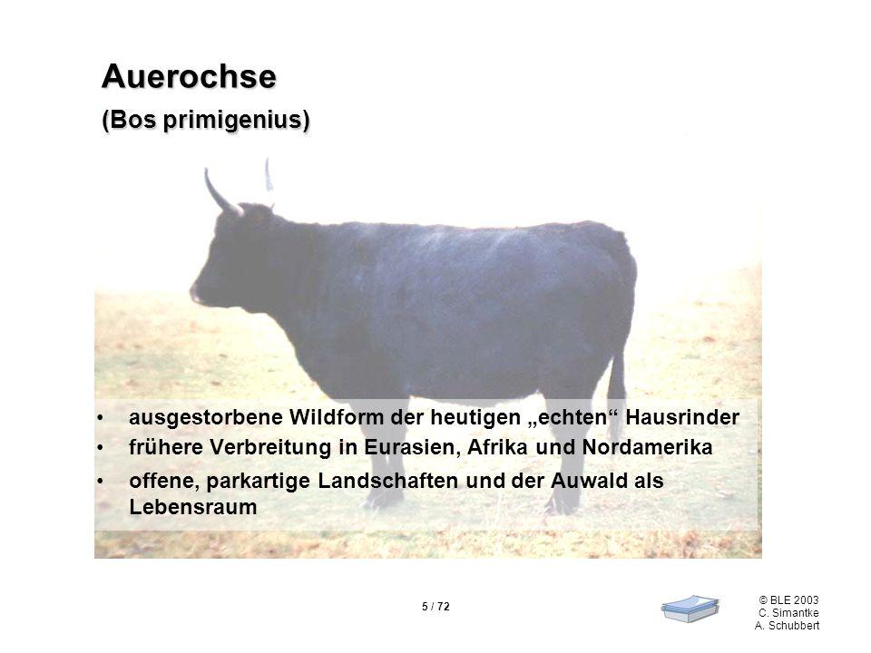 5 / 72 © BLE 2003 C. Simantke A. Schubbert Auerochse (Bos primigenius) ausgestorbene Wildform der heutigen echten Hausrinder frühere Verbreitung in Eu