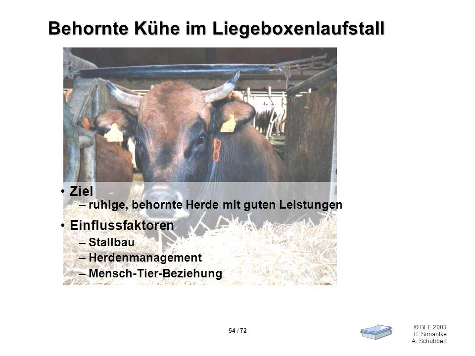 54 / 72 © BLE 2003 C. Simantke A. Schubbert Behornte Kühe im Liegeboxenlaufstall Ziel –ruhige, behornte Herde mit guten Leistungen Einflussfaktoren –S
