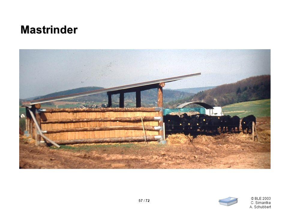 57 / 72 © BLE 2003 C. Simantke A. Schubbert Mastrinder Mastrinder