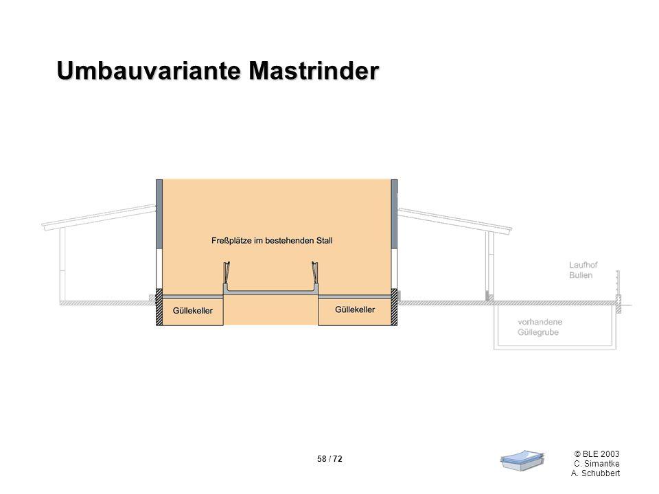 58 / 72 © BLE 2003 C. Simantke A. Schubbert Umbauvariante Mastrinder