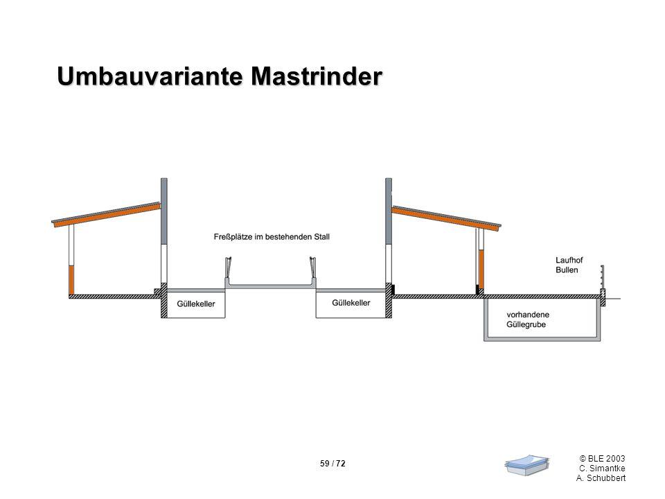 59 / 72 © BLE 2003 C. Simantke A. Schubbert Umbauvariante Mastrinder