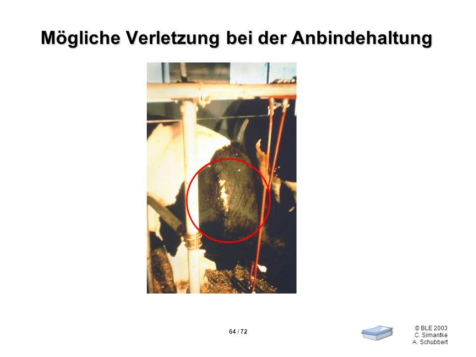 64 / 72 © BLE 2003 C. Simantke A. Schubbert Mögliche Verletzung bei der Anbindehaltung