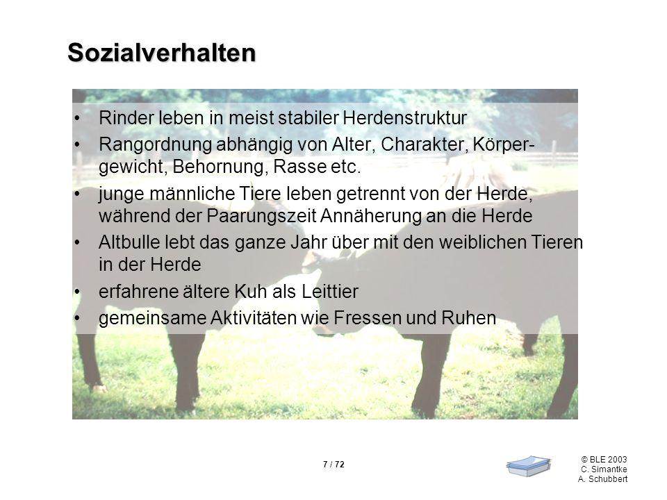7 / 72 © BLE 2003 C. Simantke A. Schubbert Sozialverhalten Rinder leben in meist stabiler Herdenstruktur Rangordnung abhängig von Alter, Charakter, Kö
