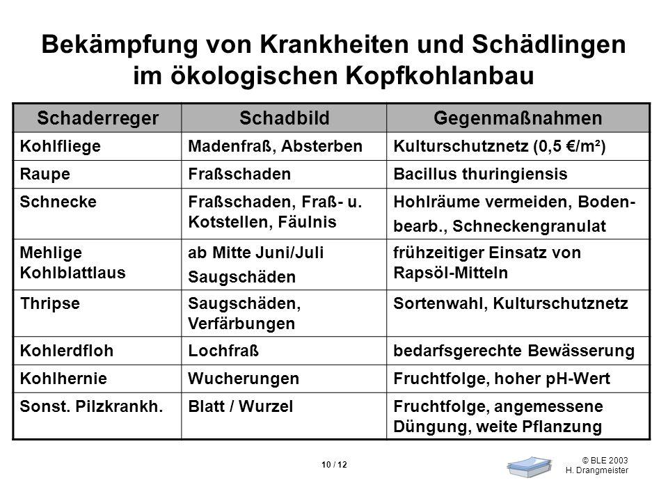 © BLE 2003 H. Drangmeister 10 / 12 Bekämpfung von Krankheiten und Schädlingen im ökologischen Kopfkohlanbau SchaderregerSchadbildGegenmaßnahmen Kohlfl