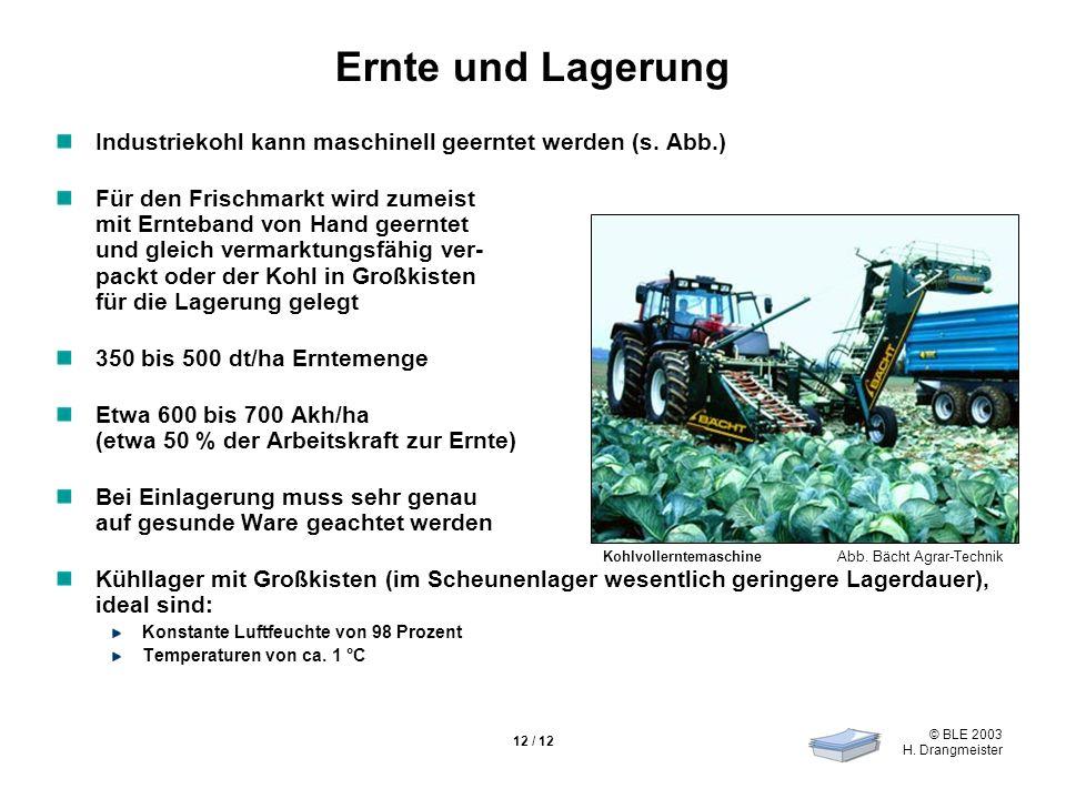 © BLE 2003 H. Drangmeister 12 / 12 Ernte und Lagerung Industriekohl kann maschinell geerntet werden (s. Abb.) Für den Frischmarkt wird zumeist mit Ern