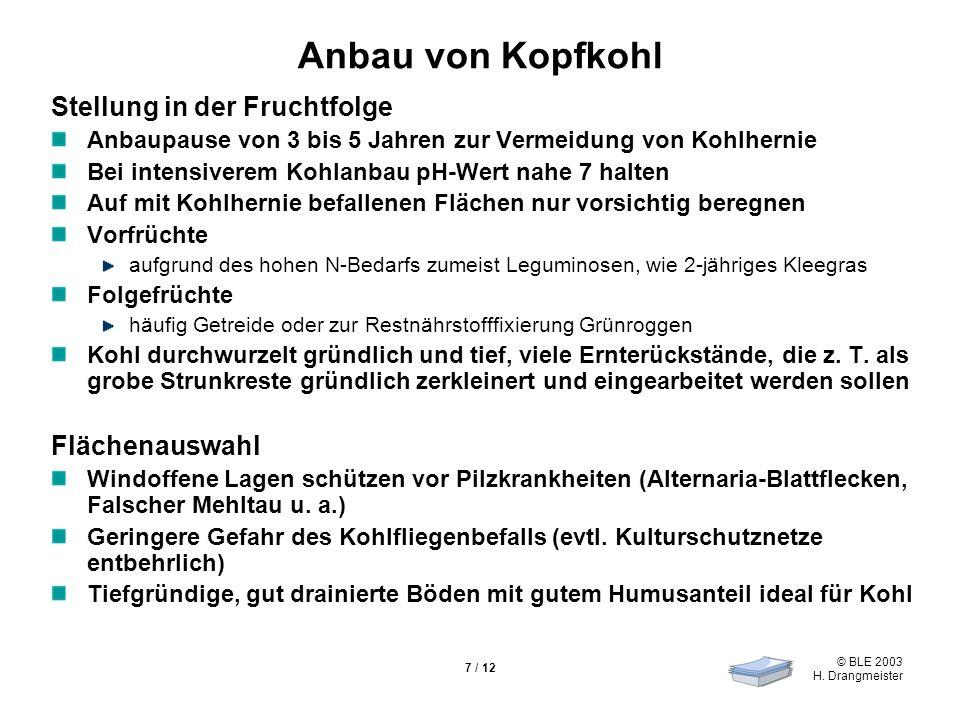 © BLE 2003 H. Drangmeister 7 / 12 Anbau von Kopfkohl Stellung in der Fruchtfolge Anbaupause von 3 bis 5 Jahren zur Vermeidung von Kohlhernie Bei inten