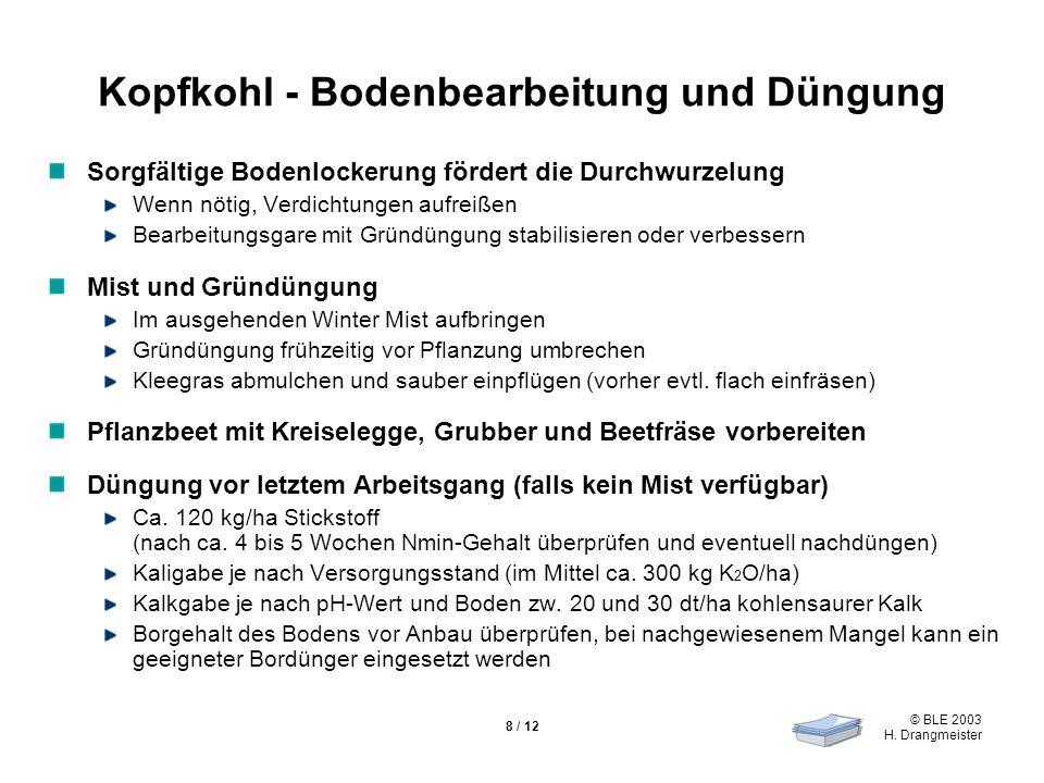 © BLE 2003 H. Drangmeister 8 / 12 Kopfkohl - Bodenbearbeitung und Düngung Sorgfältige Bodenlockerung fördert die Durchwurzelung Wenn nötig, Verdichtun