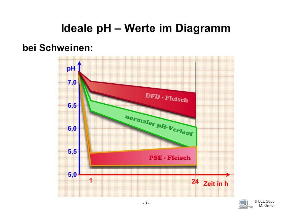 © BLE 2005 M. Omlor - 3 - Ideale pH – Werte im Diagramm bei Schweinen: