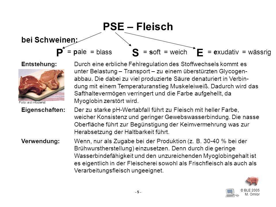 © BLE 2005 M. Omlor - 5 - PSE – Fleisch bei Schweinen: PSE = pale = soft= exudativ= blass= weich= wässrig Eigenschaften: Entstehung:Durch eine erblich