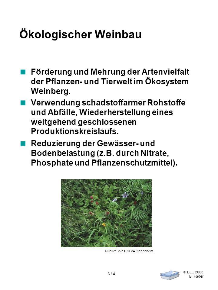 © BLE 2006 B. Fader 3 / 4 Ökologischer Weinbau Förderung und Mehrung der Artenvielfalt der Pflanzen- und Tierwelt im Ökosystem Weinberg. Verwendung sc