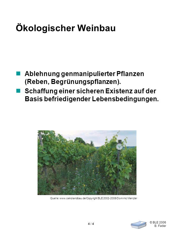 © BLE 2006 B. Fader 4 / 4 Ökologischer Weinbau Ablehnung genmanipulierter Pflanzen (Reben, Begrünungspflanzen). Schaffung einer sicheren Existenz auf