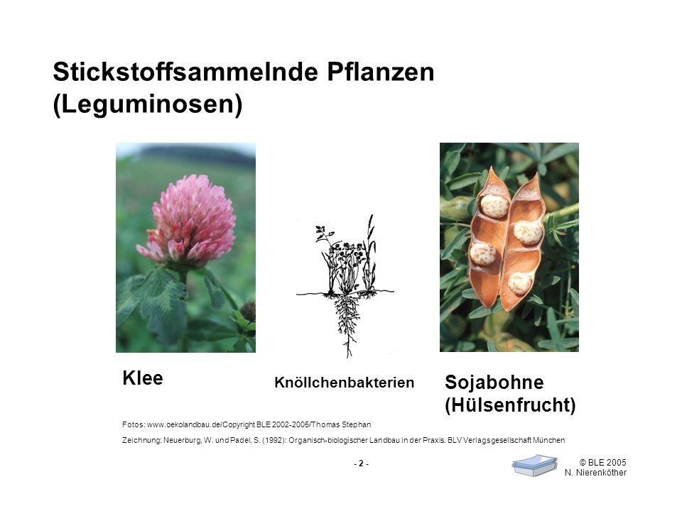 - 2 - © BLE 2005 N. Nierenköther Stickstoffsammelnde Pflanzen (Leguminosen) Klee Sojabohne (Hülsenfrucht) Knöllchenbakterien Fotos: www.oekolandbau.de