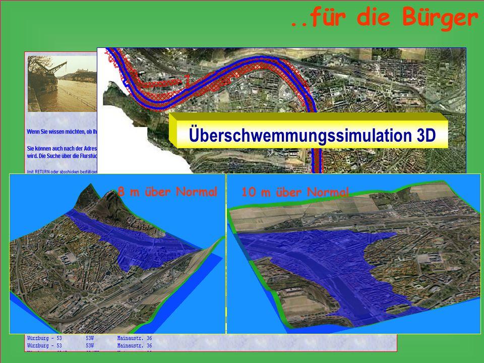 Überschwemmungsgebiete Überschwemmungssimulation 3D 8 m über Normal 10 m über Normal