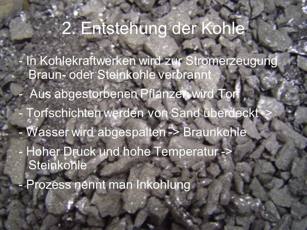 2. Entstehung der Kohle - In Kohlekraftwerken wird zur Stromerzeugung Braun- oder Steinkohle verbrannt - Aus abgestorbenen Pflanzen wird Torf - Torfsc