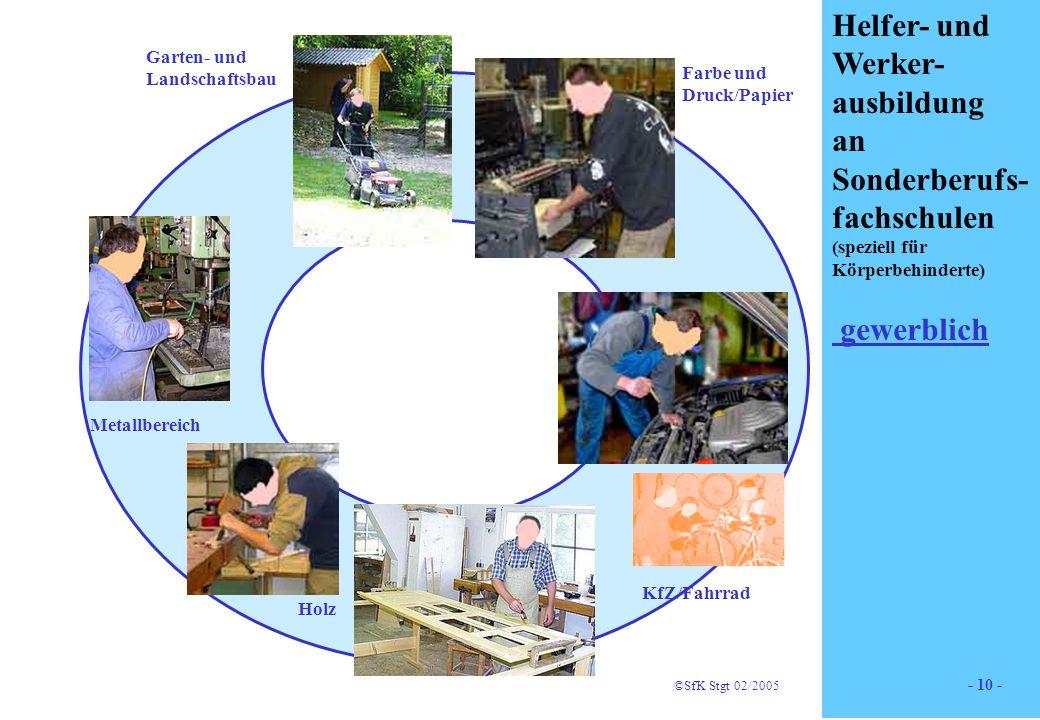 10 Helfer- und Werker- ausbildung an Sonderberufs- fachschulen (speziell für Körperbehinderte) gewerblich Holz Farbe und Druck/Papier Garten- und Land
