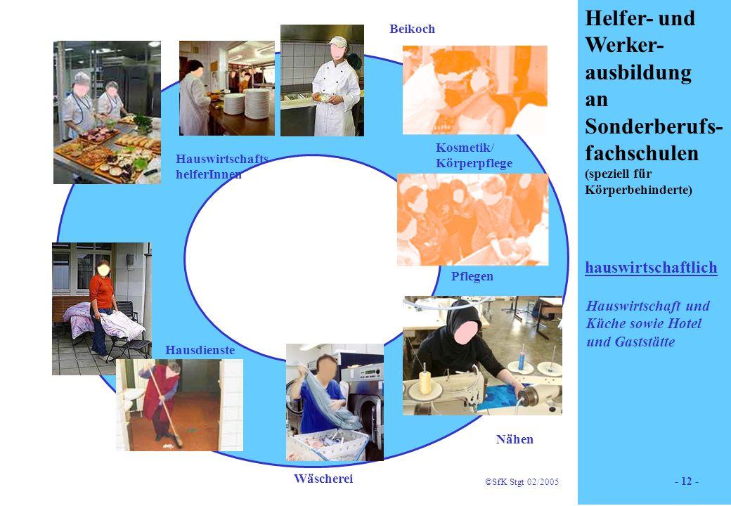 12 Helfer- und Werker- ausbildung an Sonderberufs- fachschulen (speziell für Körperbehinderte) hauswirtschaftlich Holz Kosmetik/ Körperpflege Beikoch