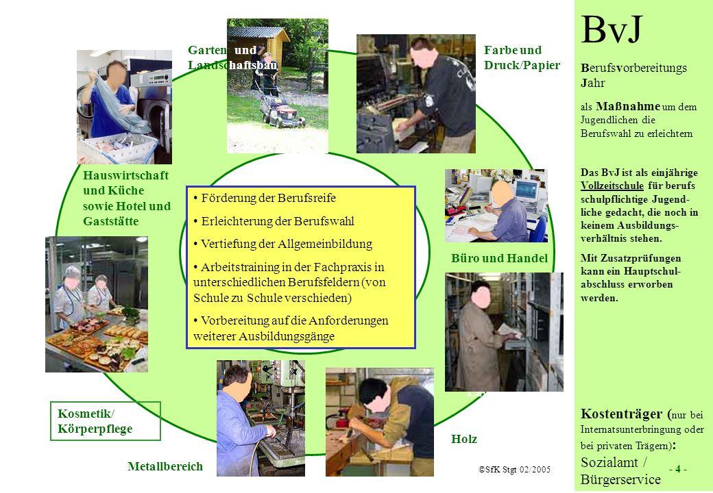 4 BvJ Berufsvorbereitungs Jahr als Maßnahme um dem Jugendlichen die Berufswahl zu erleichtern Das BvJ ist als einjährige Vollzeitschule für berufs sch