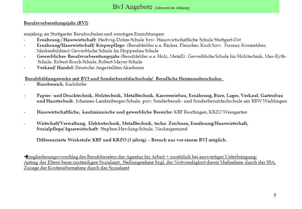 5 BvJ Angebote (Adressen im Anhang) Berufsvorbereitungsjahr (BVJ) einjährig, an Stuttgarter Berufsschulen und sonstigen Einrichtungen: - Ernährung / H