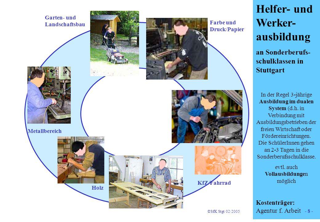 8 Helfer- und Werker- ausbildung an Sonderberufs- schulklassen in Stuttgart In der Regel 3-jährige Ausbildung im dualen System (d.h. in Verbindung mit