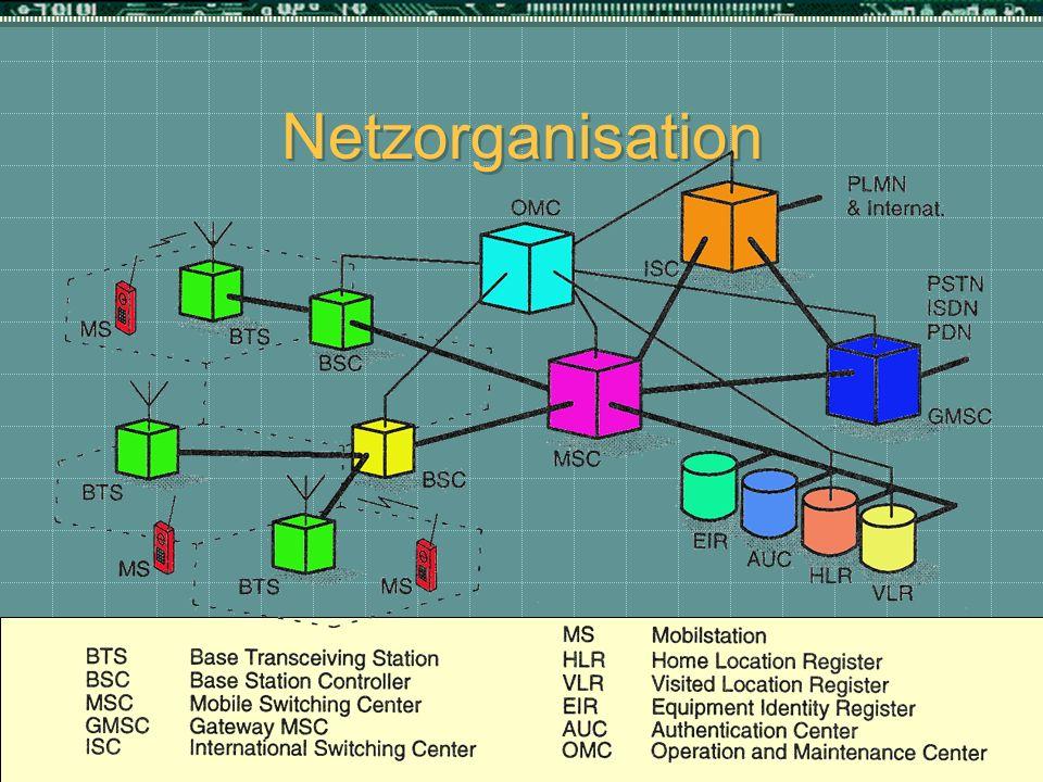Netzorganisation