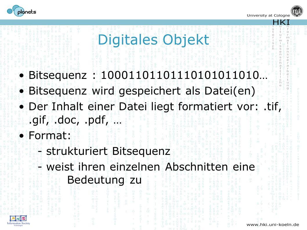 Digitales Objekt Bitsequenz : 10001101101110101011010… Bitsequenz wird gespeichert als Datei(en) Der Inhalt einer Datei liegt formatiert vor:.tif,.gif,.doc,.pdf, … Format: - strukturiert Bitsequenz - weist ihren einzelnen Abschnitten eine Bedeutung zu