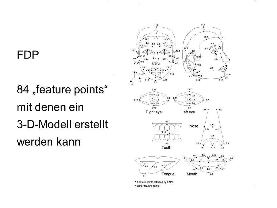 FDP 84 feature points, mit denen ein 3-D-Modell erstellt werden kann