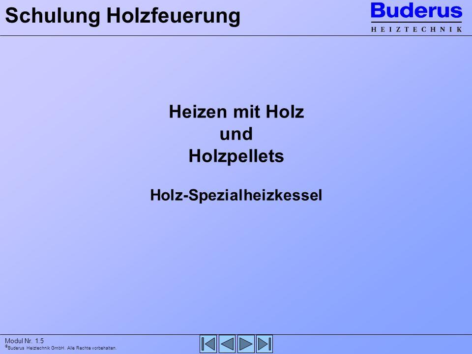 Buderus Heiztechnik GmbH. Alle Rechte vorbehalten. Modul Nr. 1.5 Heizen mit Holz und Holzpellets Holz-Spezialheizkessel Schulung Holzfeuerung