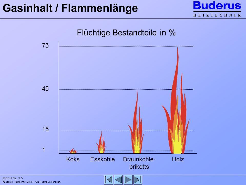Buderus Heiztechnik GmbH. Alle Rechte vorbehalten. Modul Nr. 1.5 Gasinhalt / Flammenlänge 75 45 15 1 KoksEsskohleBraunkohle- briketts Holz Flüchtige B